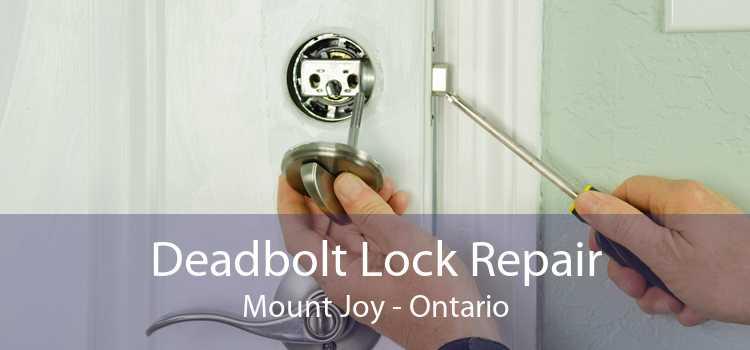 Deadbolt Lock Repair Mount Joy - Ontario
