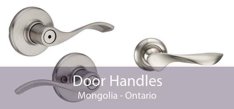 Door Handles Mongolia - Ontario