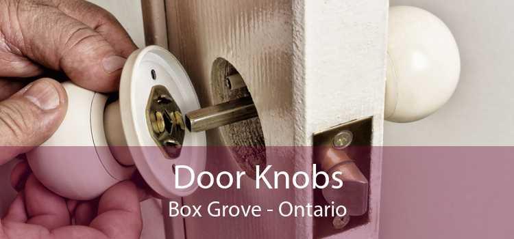 Door Knobs Box Grove - Ontario