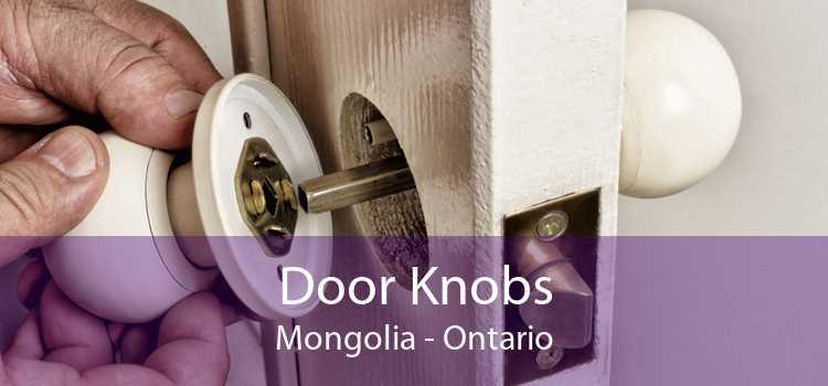 Door Knobs Mongolia - Ontario