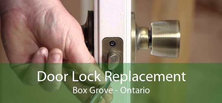 Door Lock Replacement Box Grove - Ontario