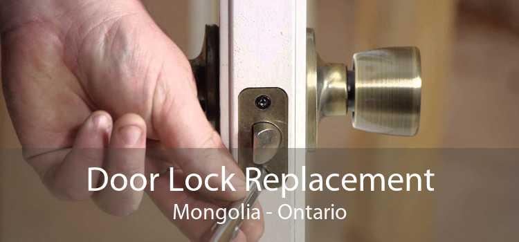Door Lock Replacement Mongolia - Ontario