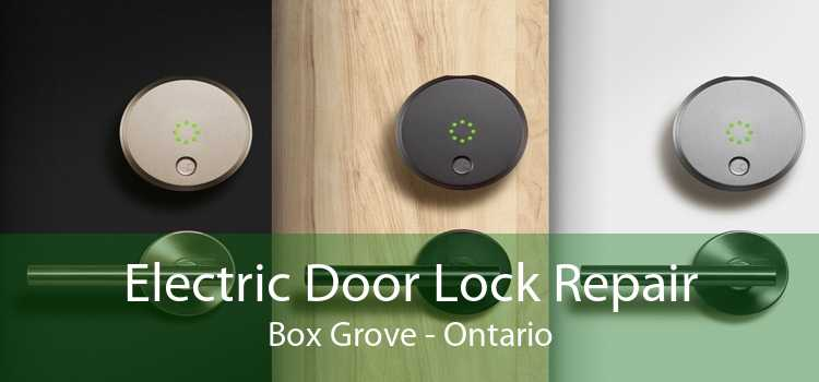 Electric Door Lock Repair Box Grove - Ontario