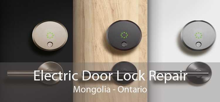 Electric Door Lock Repair Mongolia - Ontario