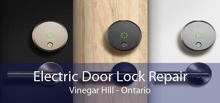 Electric Door Lock Repair Vinegar Hill - Ontario