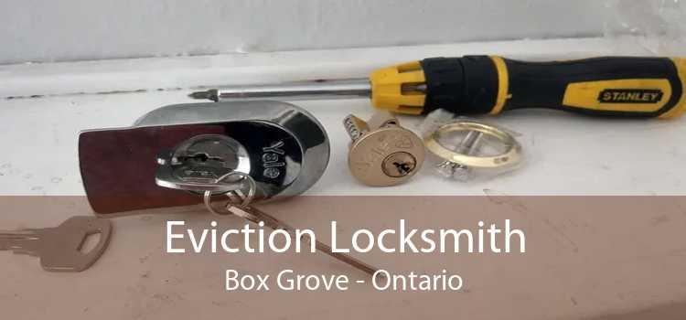 Eviction Locksmith Box Grove - Ontario