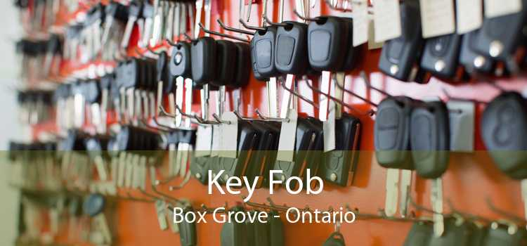 Key Fob Box Grove - Ontario