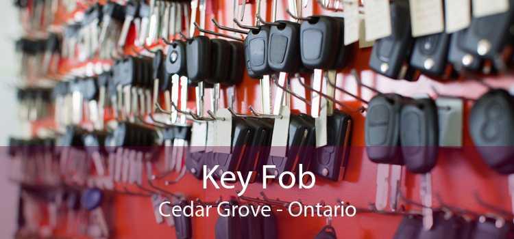 Key Fob Cedar Grove - Ontario