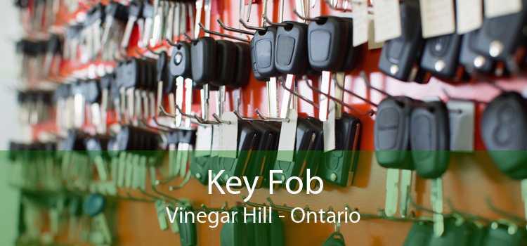 Key Fob Vinegar Hill - Ontario