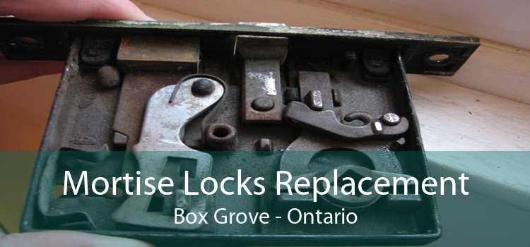 Mortise Locks Replacement Box Grove - Ontario