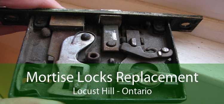 Mortise Locks Replacement Locust Hill - Ontario