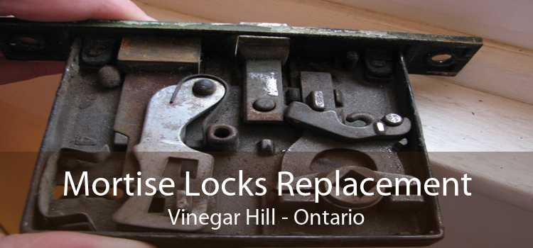 Mortise Locks Replacement Vinegar Hill - Ontario