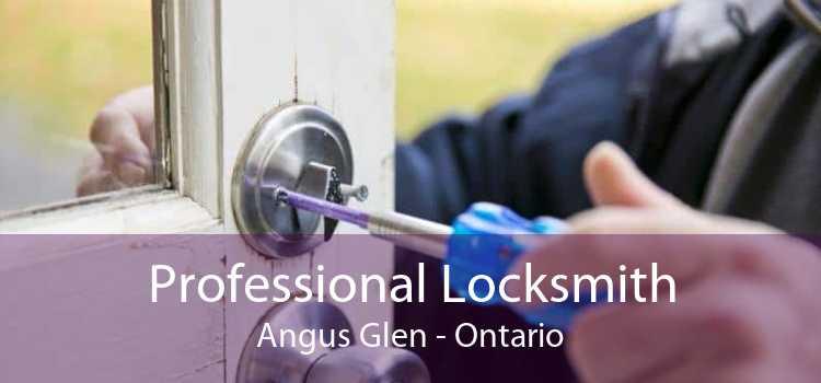Professional Locksmith Angus Glen - Ontario