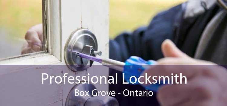 Professional Locksmith Box Grove - Ontario