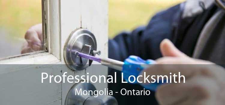 Professional Locksmith Mongolia - Ontario