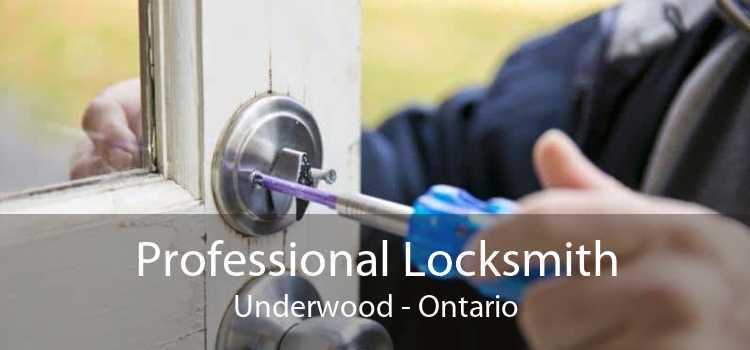 Professional Locksmith Underwood - Ontario