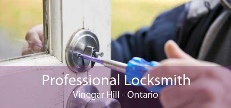 Professional Locksmith Vinegar Hill - Ontario