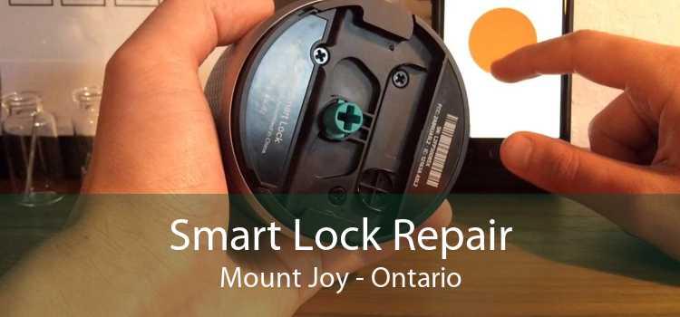 Smart Lock Repair Mount Joy - Ontario